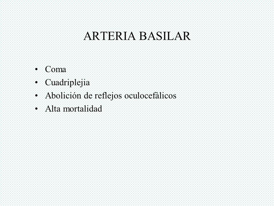 ARTERIA BASILAR Coma Cuadriplejia Abolición de reflejos oculocefàlicos Alta mortalidad