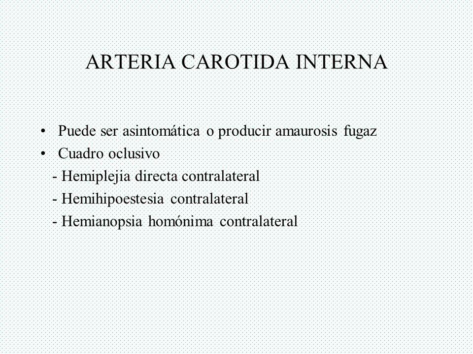 ARTERIA CEREBRAL MEDIA Territorio superficial: - Hemiparesia directa a predominio braquial - Hemihipoestesia contralateral - Defecto campos visuales, en cuadrantes - Afasia de Broca o Wernicke.