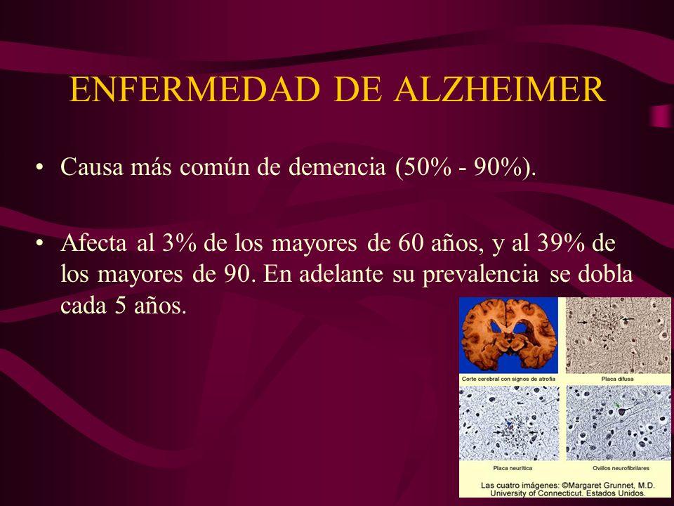 ENFERMEDAD DE ALZHEIMER Causa más común de demencia (50% - 90%). Afecta al 3% de los mayores de 60 años, y al 39% de los mayores de 90. En adelante su