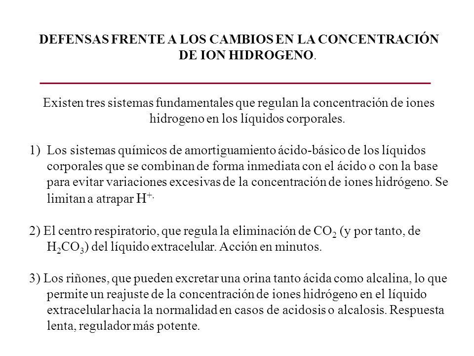 EL SISTEMA AMORTIGUADOR BICARBONATO El sistema amortiguador bicarbonato consiste en una solución acuosa con dos componentes: 1)Un ácido débil, H 2 CO 3, y 2)Una sal de bicarbonato, por ejemplo NaHCO 3 (anhidrasa carbónica) CO 2 + H 2 0 H 2 CO 3 El H 2 CO 3 se ioniza débilmente para formar pequeñas cantidades de H +.
