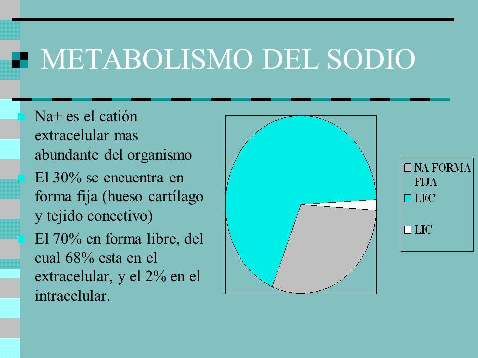 METABOLISMO DEL SODIO Na+ es el catión extracelular mas abundante del organismo El 30% se encuentra en forma fija (hueso cartílago y tejido conectivo) El 70% en forma libre, del cual 68% esta en el extracelular, y el 2% en el intracelular.