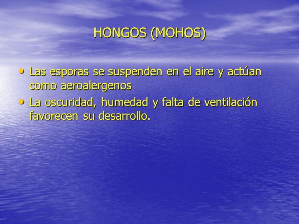 HONGOS (MOHOS) Las esporas se suspenden en el aire y actúan como aeroalergenos Las esporas se suspenden en el aire y actúan como aeroalergenos La oscu