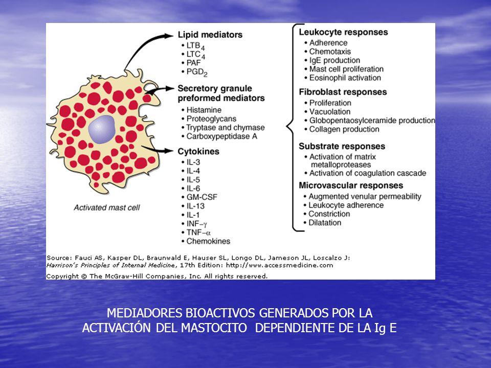 Atención en el Centro de Salud Hogar alergénico