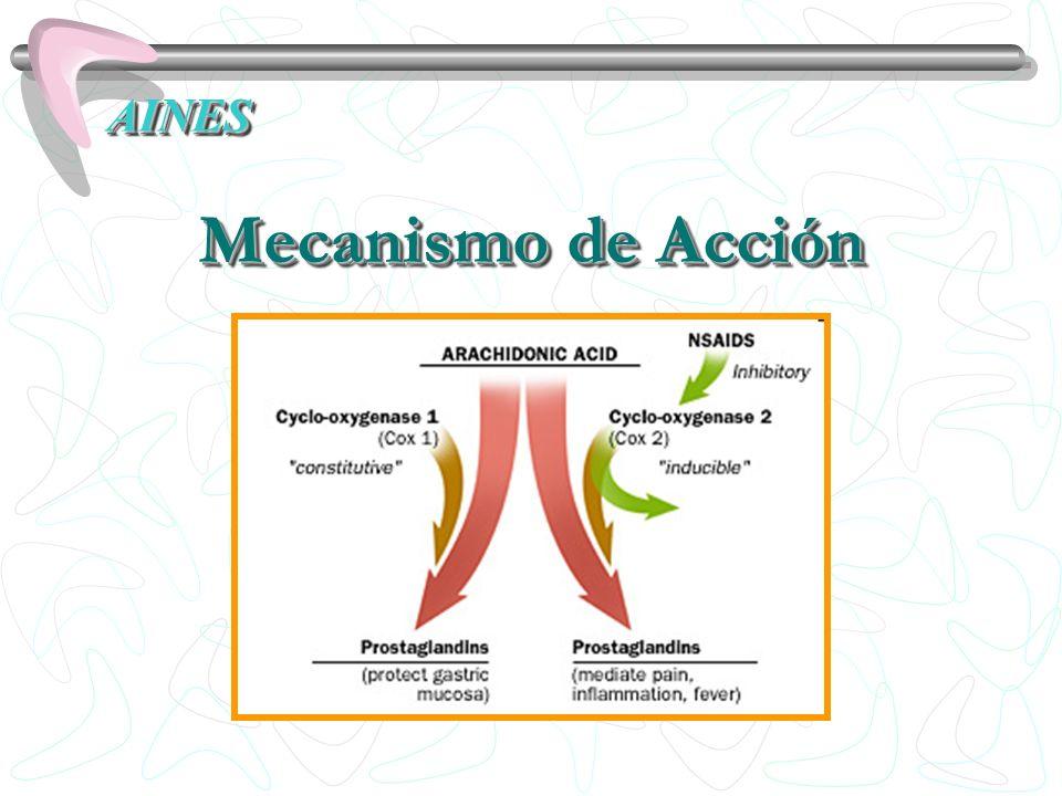 AINESAINES Mecanismo de Acción