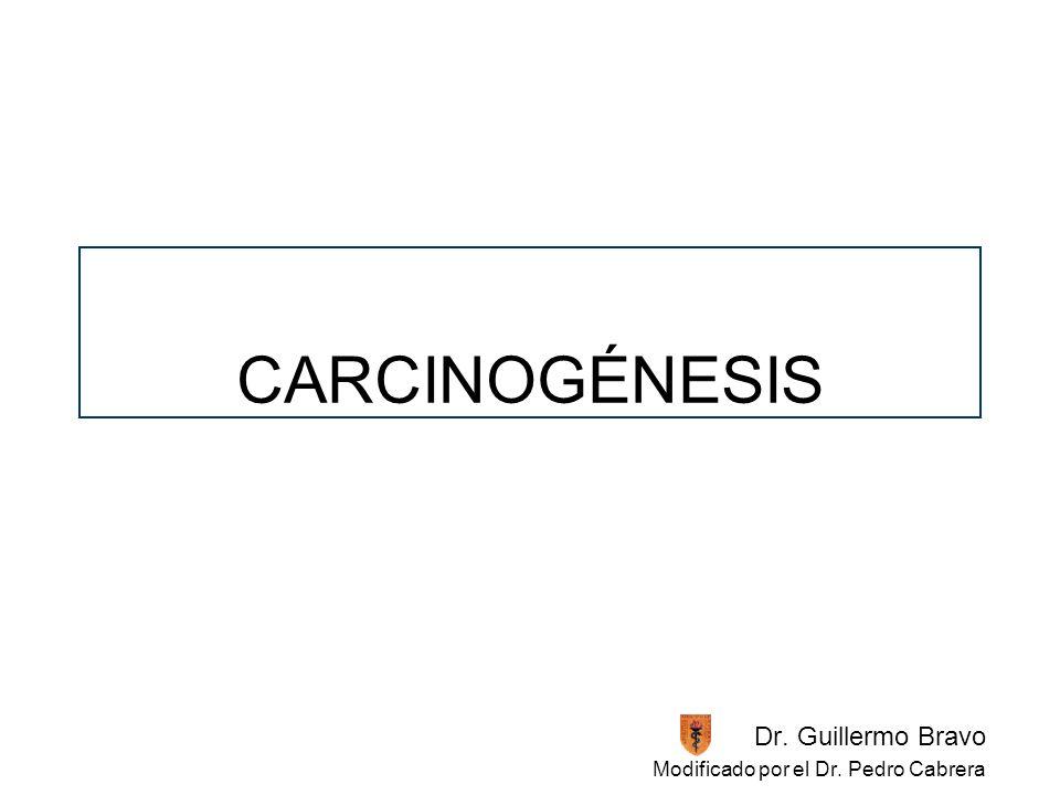 CARCINOGÉNESIS Dr. Guillermo Bravo Modificado por el Dr. Pedro Cabrera