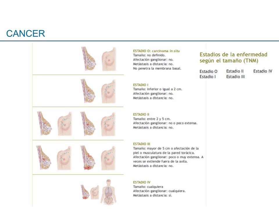 Sepúlveda P et al.