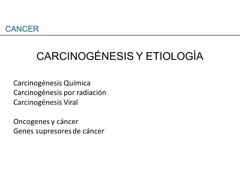 Carcinogénesis Química Carcinogénesis por radiación Carcinogénesis Viral Oncogenes y cáncer Genes supresores de cáncer CANCER CARCINOGÉNESIS Y ETIOLOG