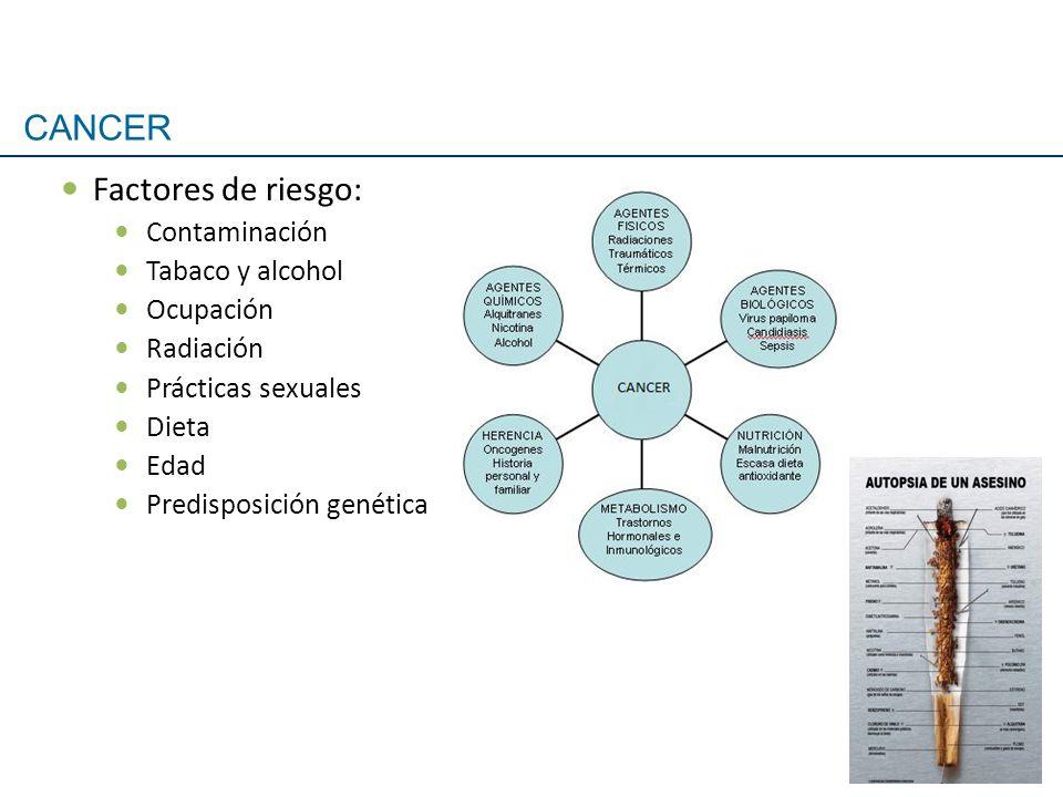 Factores de riesgo: Contaminación Tabaco y alcohol Ocupación Radiación Prácticas sexuales Dieta Edad Predisposición genética CANCER