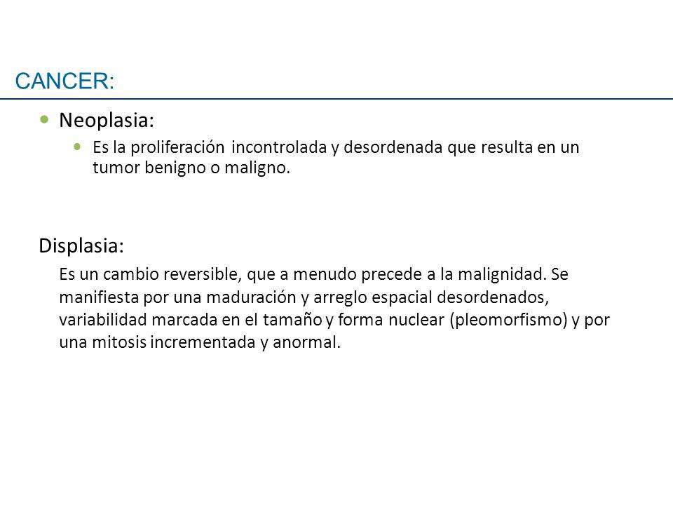 Neoplasia: Es la proliferación incontrolada y desordenada que resulta en un tumor benigno o maligno. Displasia: Es un cambio reversible, que a menudo