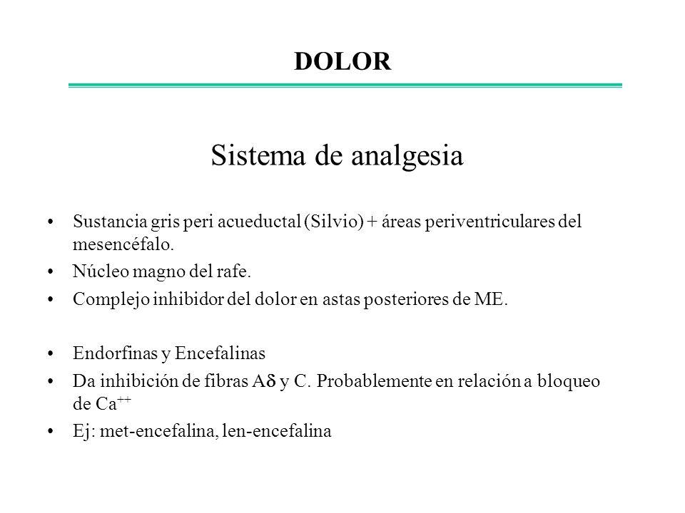 Sistema de analgesia Sustancia gris peri acueductal (Silvio) + áreas periventriculares del mesencéfalo. Núcleo magno del rafe. Complejo inhibidor del
