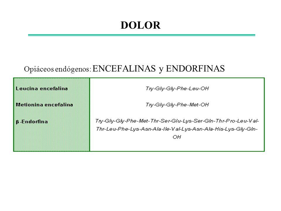Opiáceos endógenos: ENCEFALINAS y ENDORFINAS DOLOR