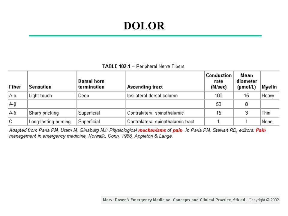 DOLOR: Inflamación inducida por nociceptores Harrison s Principles of Internal Medicine (16th edition).2006.