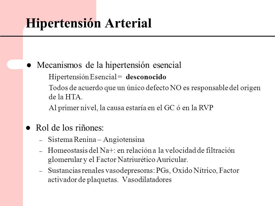 RENINA Angiotensina I Angiotensina II Vasoconstricción Secreción de Aldosterona RVP GC PA Retención de Na y líquidos Hipertensión Arterial