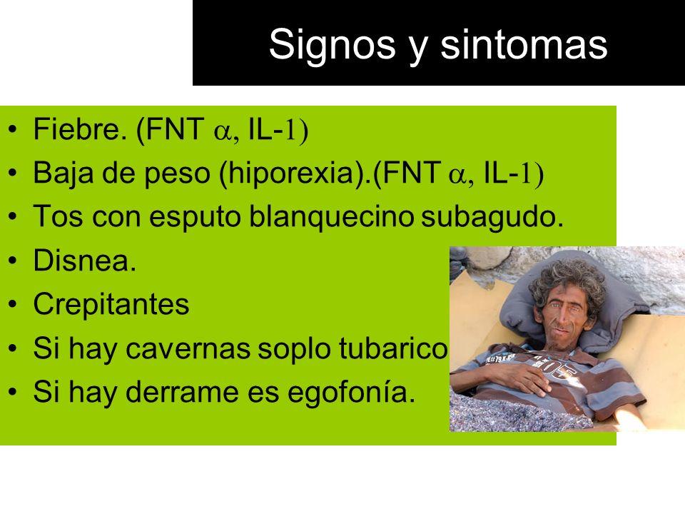 Signos y sintomas Fiebre. (FNT IL- Baja de peso (hiporexia).(FNT IL- Tos con esputo blanquecino subagudo. Disnea. Crepitantes Si hay cavernas soplo tu