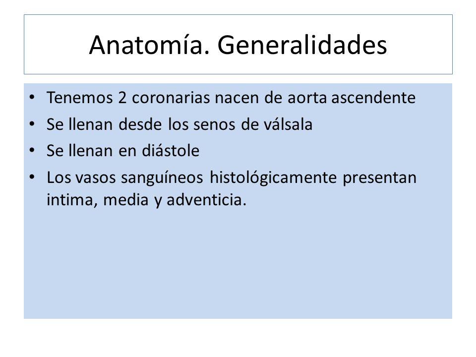 Anatomía. Generalidades Tenemos 2 coronarias nacen de aorta ascendente Se llenan desde los senos de válsala Se llenan en diástole Los vasos sanguíneos