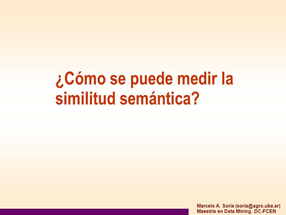 Marcelo A. Soria (soria@agro.uba.ar) Maestria en Data Mining. DC-FCEN ¿Cómo se puede medir la similitud semántica?