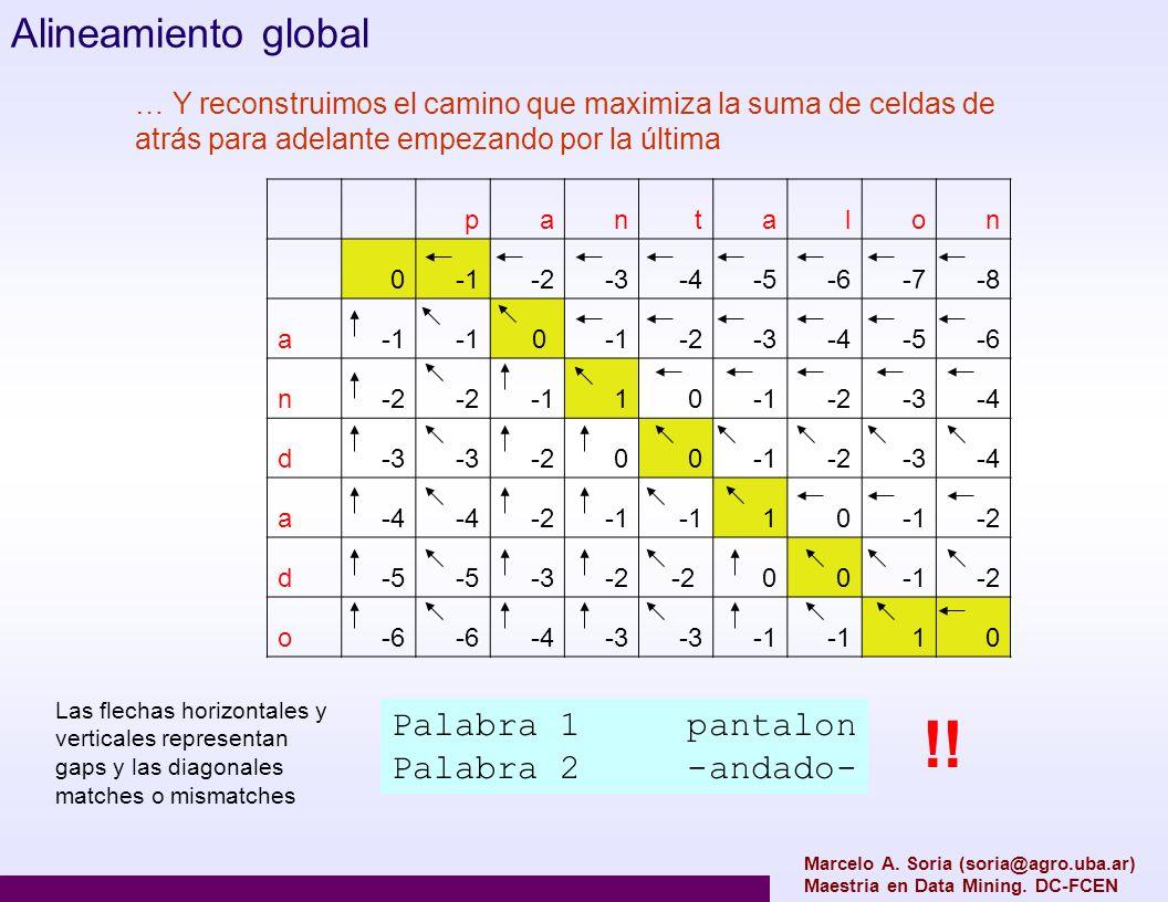 Marcelo A. Soria (soria@agro.uba.ar) Maestria en Data Mining. DC-FCEN Alineamiento global pantalon 0-2-3-4-5-6-7-8 a 0 -2-3-4-5-6 n-2 10 -2-3-4 d-3 -2