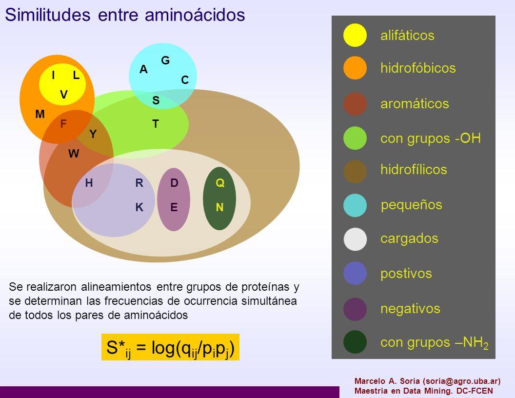 Marcelo A. Soria (soria@agro.uba.ar) Maestria en Data Mining. DC-FCEN IL V M F Y S C A G W HR K D E Q N T Similitudes entre aminoácidos alifáticos hid