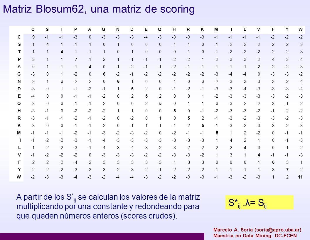 Marcelo A. Soria (soria@agro.uba.ar) Maestria en Data Mining. DC-FCEN CSTPAGNDEQHRKMILVFYW C9 -30 -4-3 -2 S41 101000 0 -2 -3 T141 101000 0 -2 -3 P 17