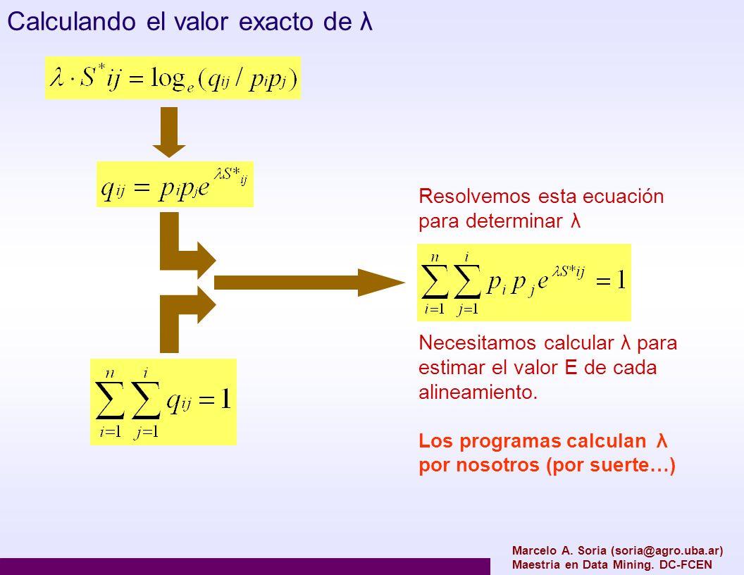Marcelo A. Soria (soria@agro.uba.ar) Maestria en Data Mining. DC-FCEN Calculando el valor exacto de λ Resolvemos esta ecuación para determinar λ Neces