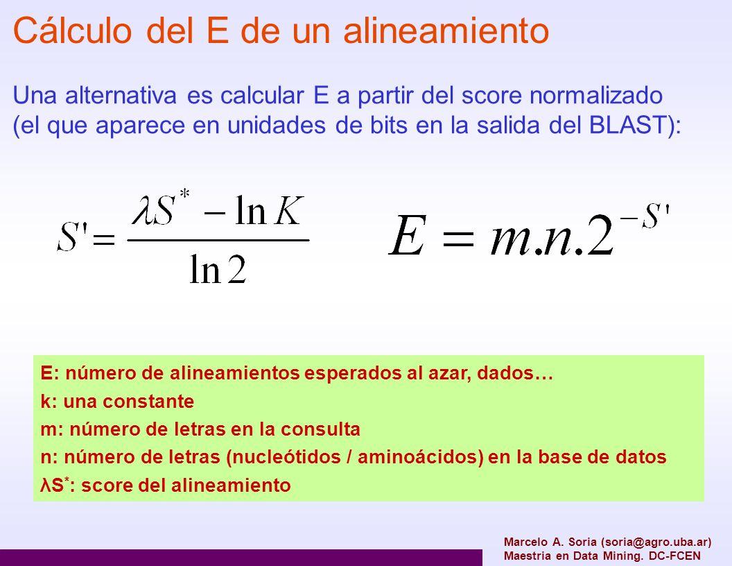 Marcelo A. Soria (soria@agro.uba.ar) Maestria en Data Mining. DC-FCEN Cálculo del E de un alineamiento Una alternativa es calcular E a partir del scor