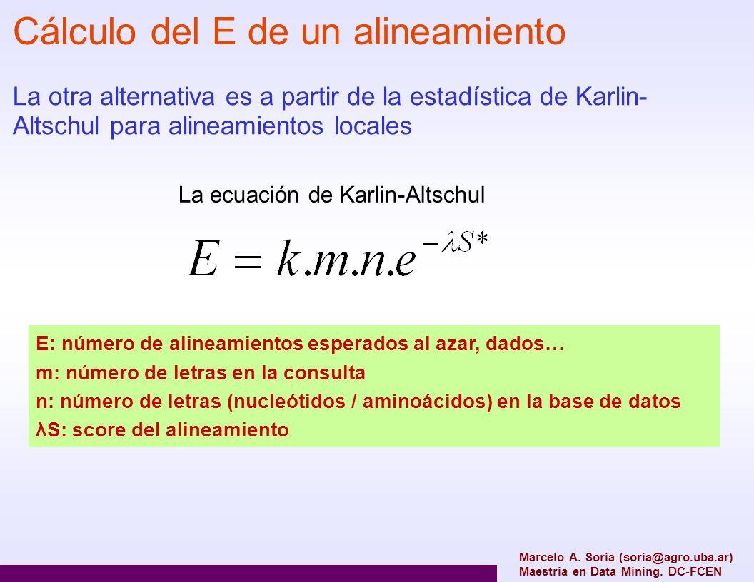 Marcelo A. Soria (soria@agro.uba.ar) Maestria en Data Mining. DC-FCEN Cálculo del E de un alineamiento La otra alternativa es a partir de la estadísti