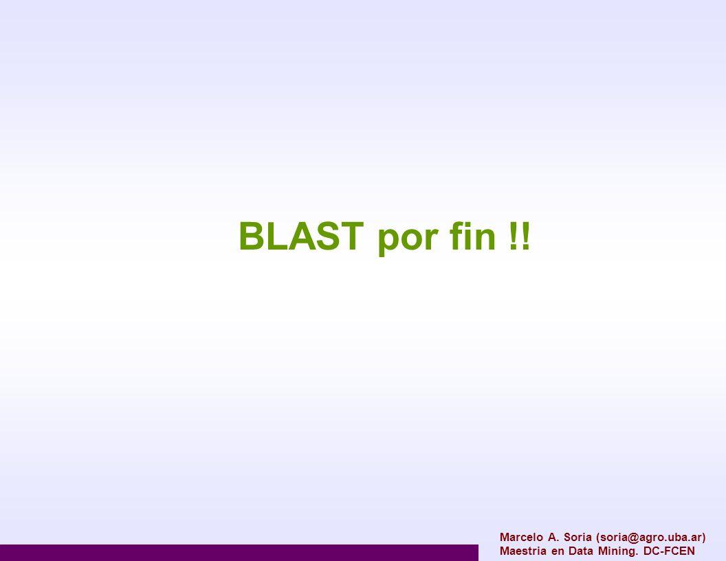 Marcelo A. Soria (soria@agro.uba.ar) Maestria en Data Mining. DC-FCEN BLAST por fin !!