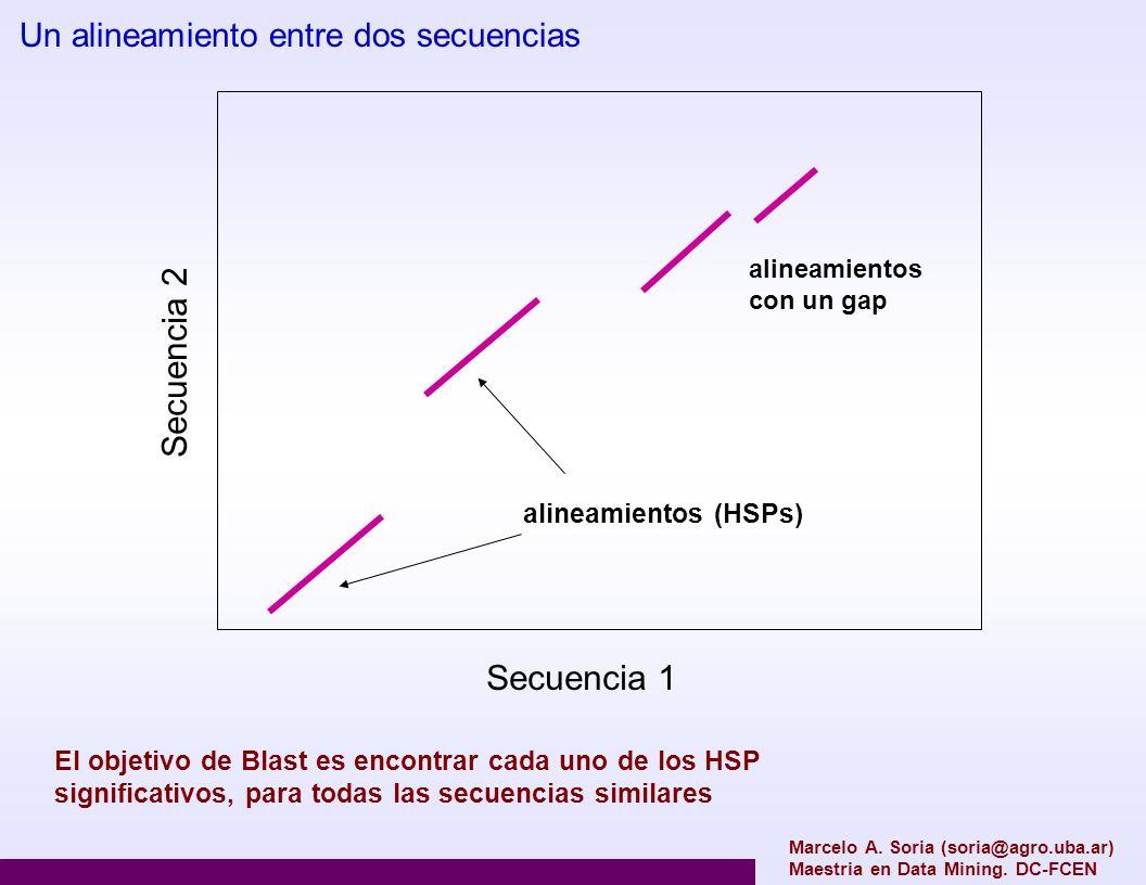 Marcelo A. Soria (soria@agro.uba.ar) Maestria en Data Mining. DC-FCEN Secuencia 1 Secuencia 2 Un alineamiento entre dos secuencias alineamientos (HSPs