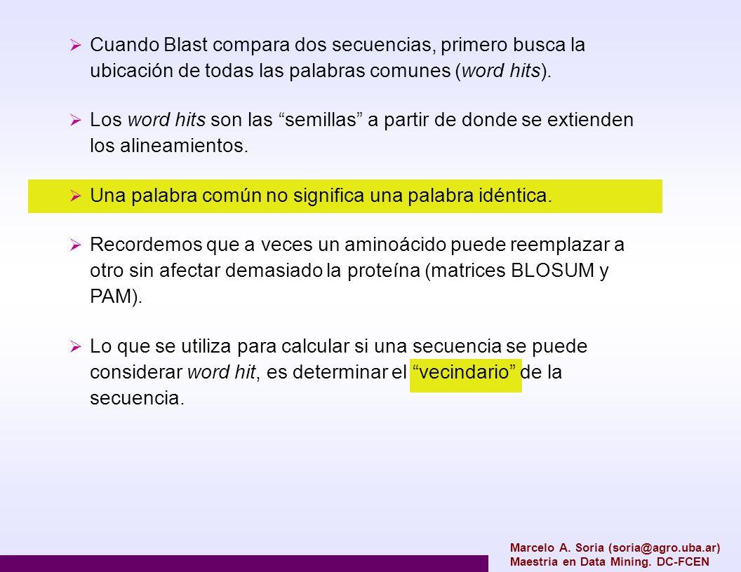 Marcelo A. Soria (soria@agro.uba.ar) Maestria en Data Mining. DC-FCEN Cuando Blast compara dos secuencias, primero busca la ubicación de todas las pal