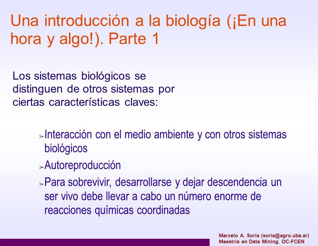 Una introducción a la biología (¡En una hora y algo!). Parte 1 Marcelo A. Soria (soria@agro.uba.ar) Maestria en Data Mining. DC-FCEN Interacción con e