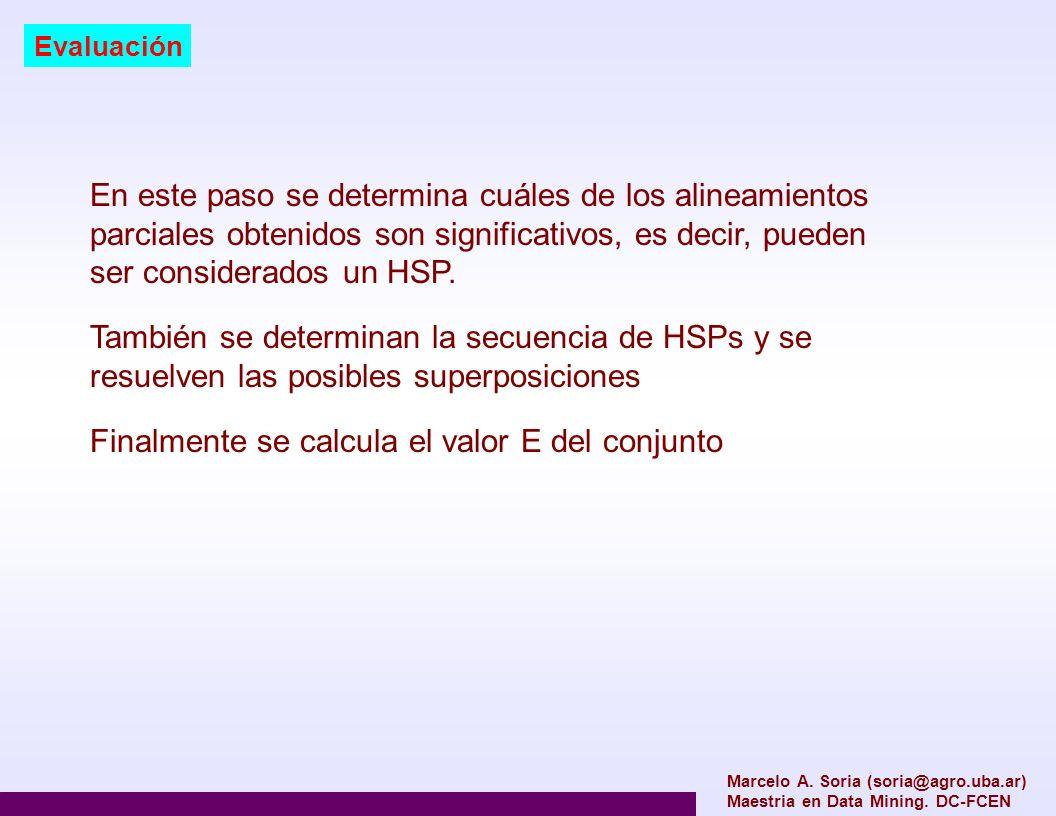 Marcelo A. Soria (soria@agro.uba.ar) Maestria en Data Mining. DC-FCEN Evaluación En este paso se determina cuáles de los alineamientos parciales obten