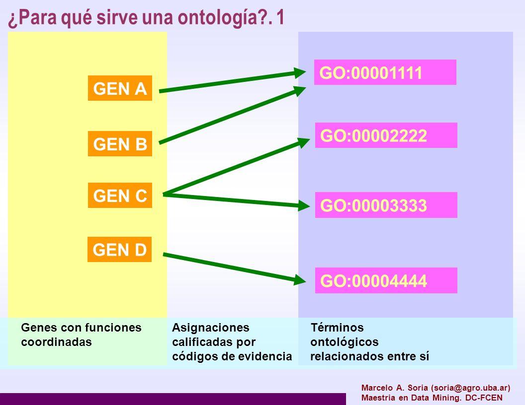 Marcelo A. Soria (soria@agro.uba.ar) Maestria en Data Mining. DC-FCEN GEN A GEN B GEN C GEN D GO:00001111 GO:00002222 GO:00003333 GO:00004444 Asignaci