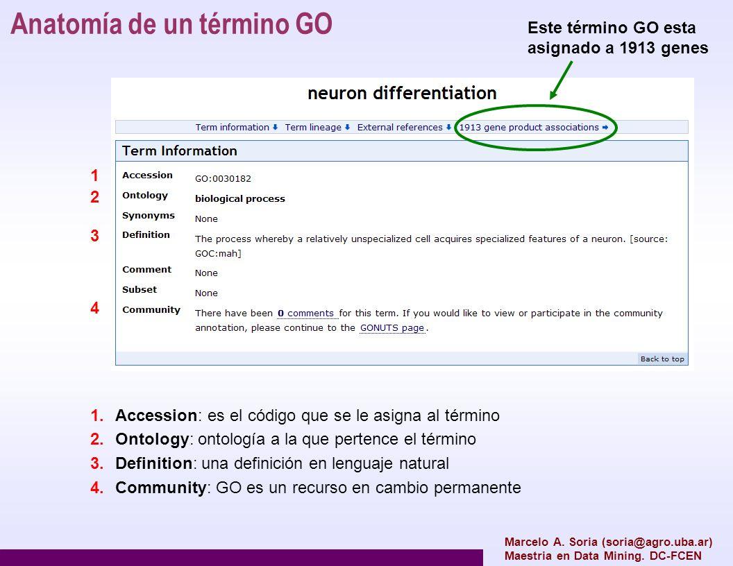 Anatomía de un término GO Marcelo A. Soria (soria@agro.uba.ar) Maestria en Data Mining. DC-FCEN 1 2 3 4 1.Accession: es el código que se le asigna al