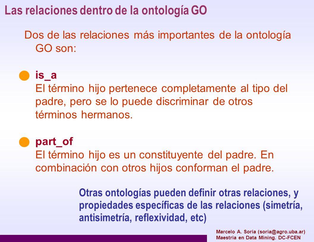 Las relaciones dentro de la ontología GO Otras ontologías pueden definir otras relaciones, y propiedades específicas de las relaciones (simetría, anti