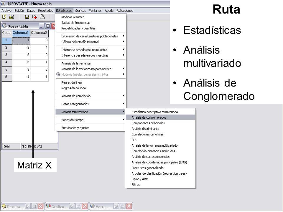 Ruta Estadísticas Análisis multivariado Análisis de Conglomerado Matriz X