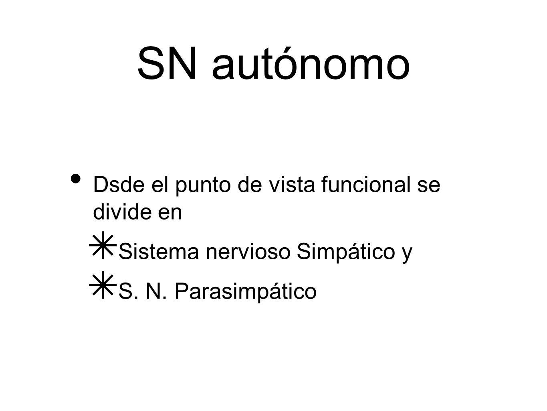 SN autónomo Dsde el punto de vista funcional se divide en Sistema nervioso Simpático y S. N. Parasimpático