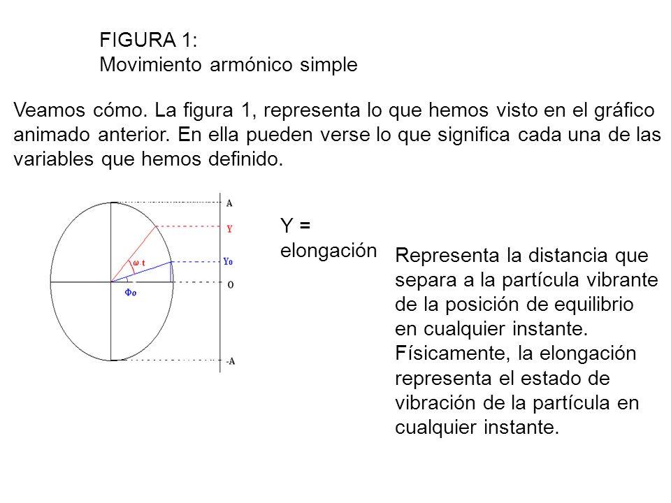 A = amplitud Representa el máximo valor que puede tomar la elongación.