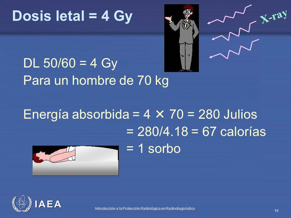 IAEA Introducción a la Protección Radiológica en Radiodiagnóstico 14 Dosis letal = 4 Gy DL 50/60 = 4 Gy Para un hombre de 70 kg Energía absorbida = 4