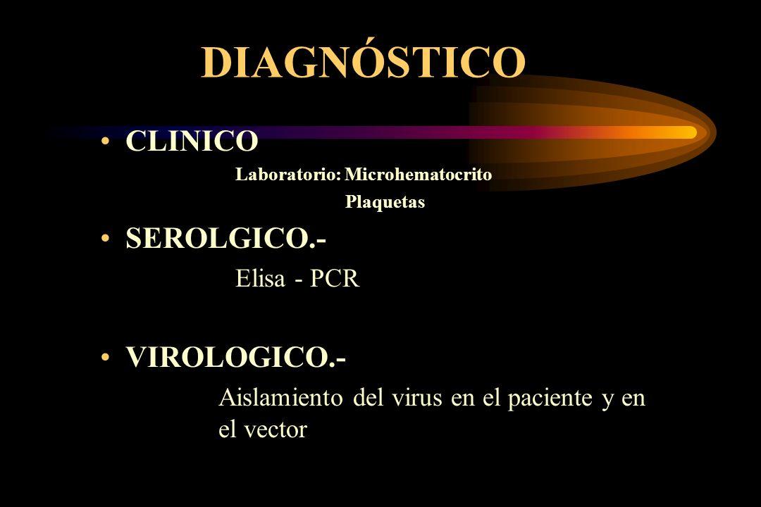 DIAGNÓSTICO CLINICO Laboratorio: Microhematocrito Plaquetas SEROLGICO.- Elisa - PCR VIROLOGICO.- Aislamiento del virus en el paciente y en el vector