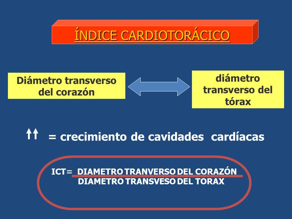 ÍNDICE CARDIOTORÁCICO Diámetro transverso del corazón diámetro transverso del tórax = crecimiento de cavidades cardíacas ICT= DIAMETRO TRANVERSO DEL CORAZÓN DIAMETRO TRANSVESO DEL TORAX