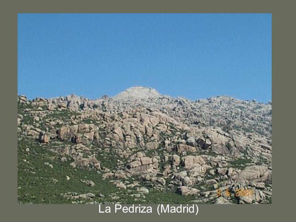 La Pedriza (Madrid)