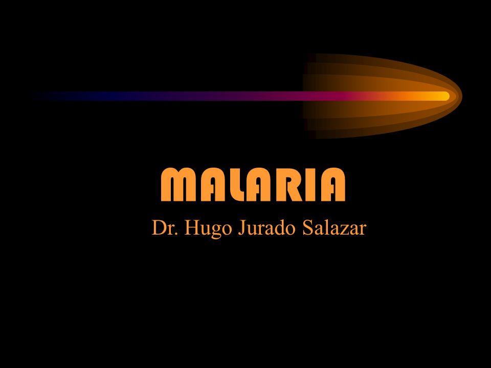 Tratamiento de la Malaria por P.Falciparum PRIMER DIA: Sulfadoxina + Piremetamina 25 mg.