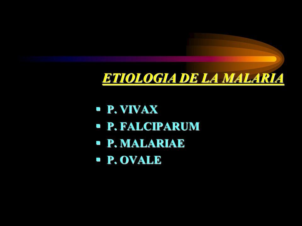 ETIOLOGIA DE LA MALARIA P. VIVAX P. VIVAX P. FALCIPARUM P. FALCIPARUM P. MALARIAE P. MALARIAE P. OVALE P. OVALE