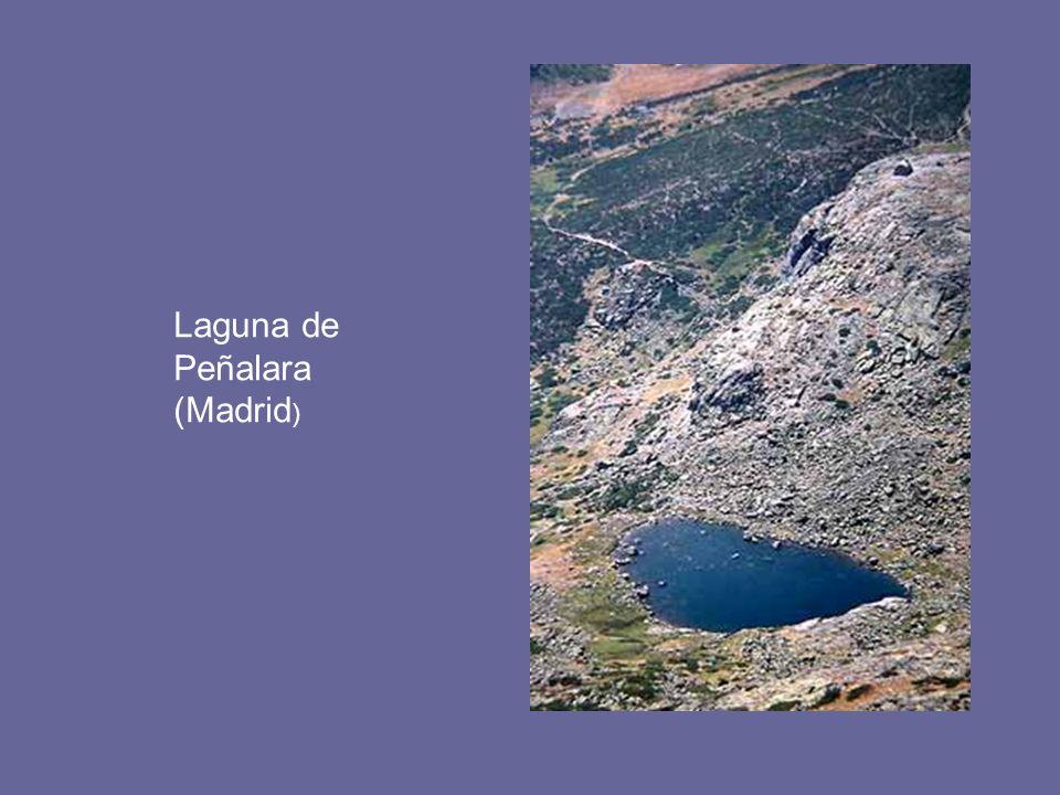 Laguna de Peñalara (Madrid )