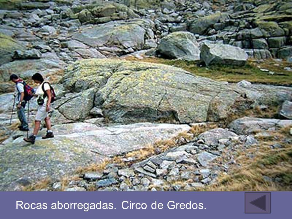 Rocas aborregadas. Circo de Gredos.