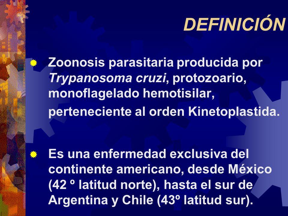 DEFINICIÓN Zoonosis parasitaria producida por Trypanosoma cruzi, protozoario, monoflagelado hemotisilar, perteneciente al orden Kinetoplastida. Es una