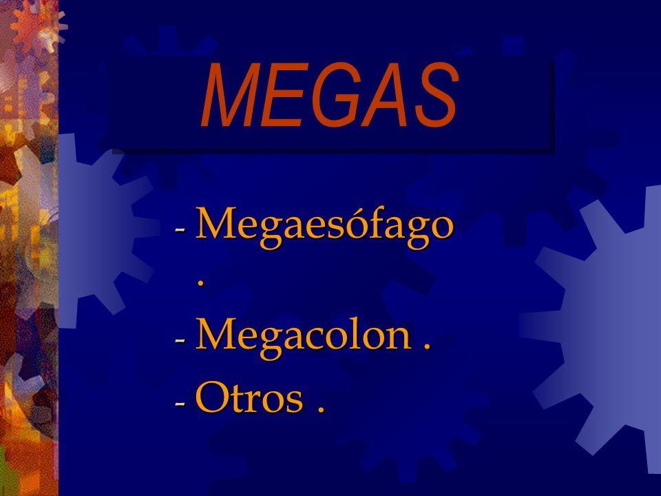 MEGAS - Megaesófago. - Megacolon. - Otros.