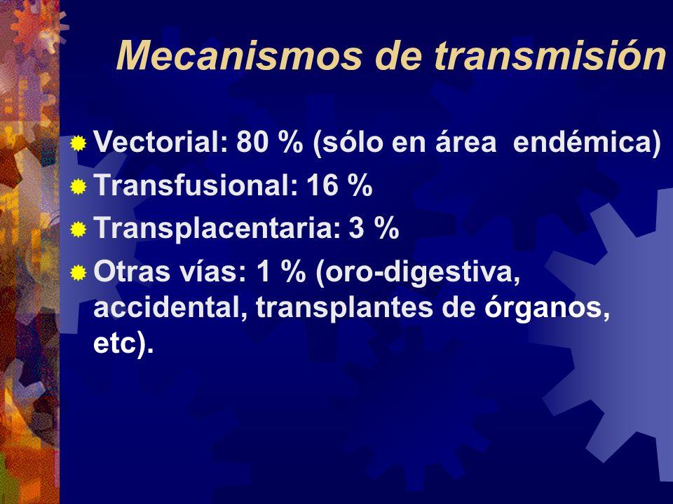 Mecanismos de transmisión Vectorial: 80 % (sólo en área endémica) Transfusional: 16 % Transplacentaria: 3 % Otras vías: 1 % (oro-digestiva, accidental