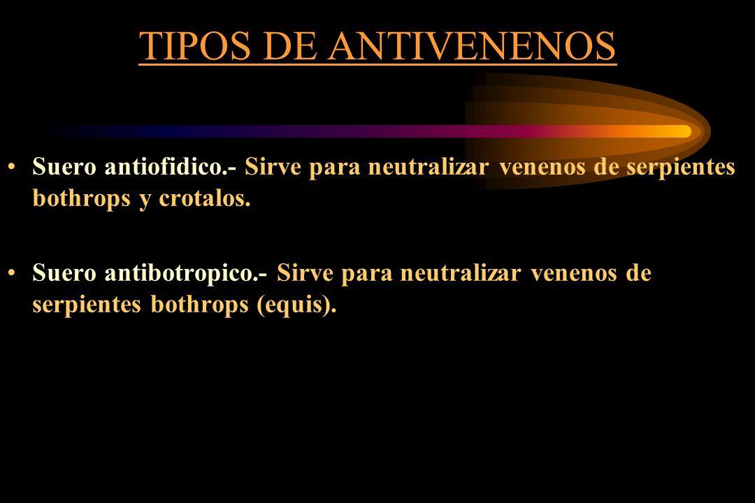 TIPOS DE ANTIVENENOS Suero antiofidico.- Sirve para neutralizar venenos de serpientes bothrops y crotalos. Suero antibotropico.- Sirve para neutraliza