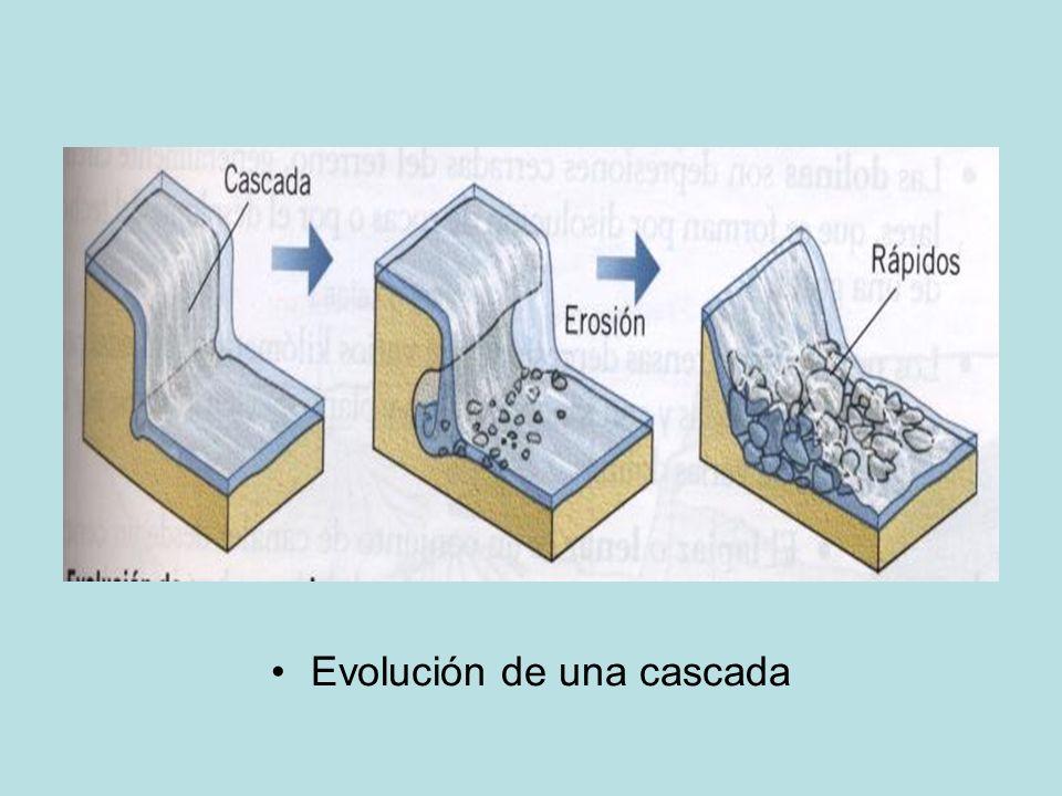 Evolución de una cascada